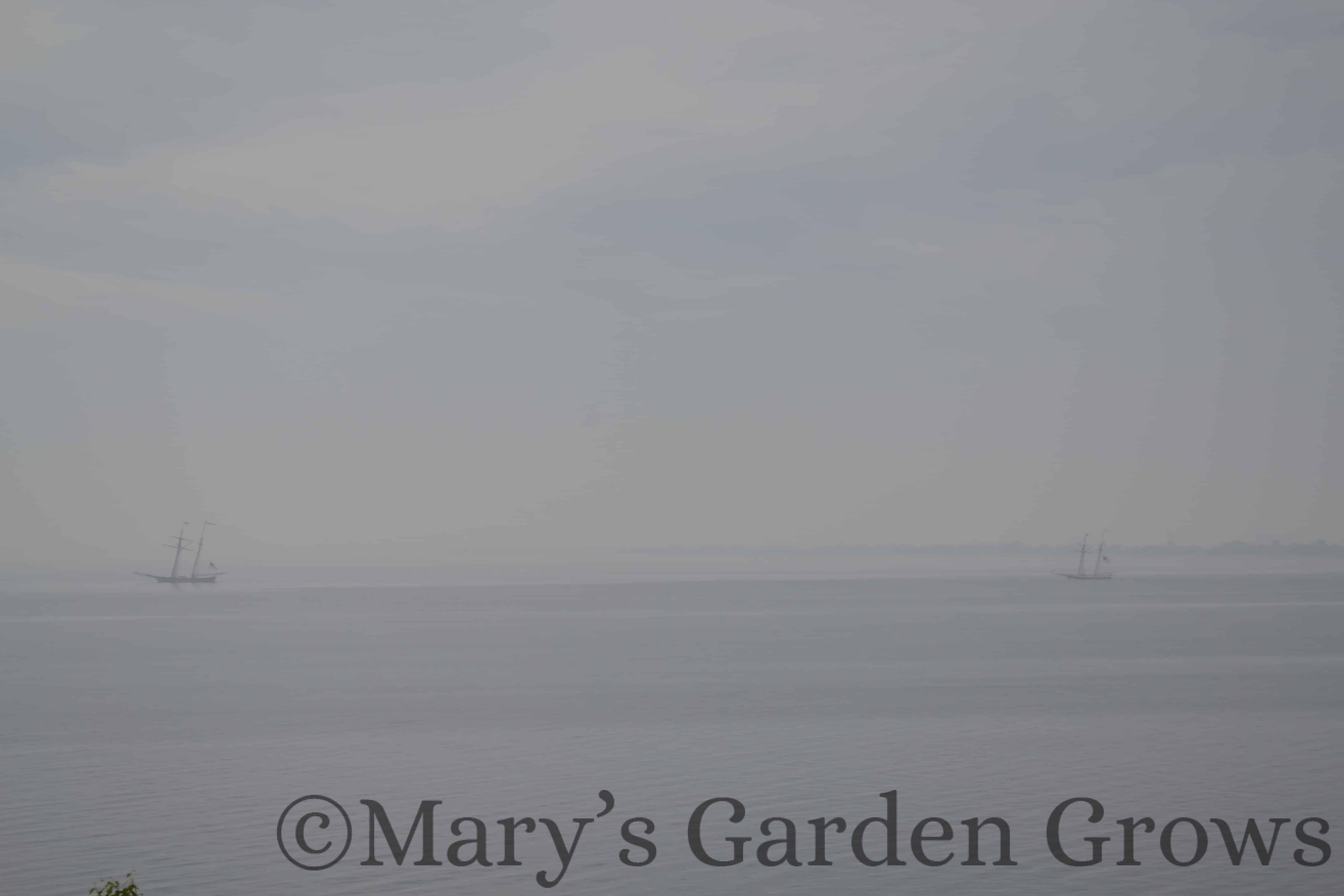 Duluth Rose Garden - Old Ships